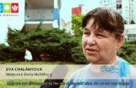 Náš Hlohovec 2011